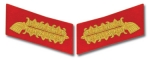 Bullion Collar Tabs - Army Field Marshall - Reddick Militaria