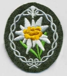 Edelweiss Arm Badge-Army Mountain Troops, Dark Green - Reddick Militaria